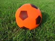 Hierba y bola Fotografía de archivo