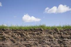 Hierba y cielo de la tierra Foto de archivo libre de regalías