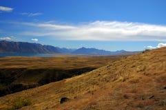 Hierba y colina del mechón en el lago Tekapo imagenes de archivo
