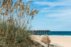 Hierba y dunas de la playa con el embarcadero de la pesca en Sandbridge Imagen de archivo libre de regalías