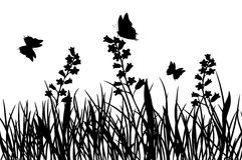 Hierba y flor, vector Foto de archivo libre de regalías