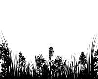 Hierba y flores del vector Imagenes de archivo
