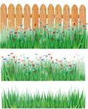 Hierba y flores, vector Imágenes de archivo libres de regalías
