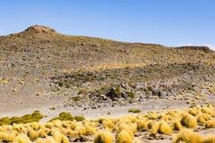 Hierba y montaña en reserva nacional de los flamencos del Los Fotos de archivo