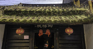 Hierba y musgo en el tejado hoi-an 2 Foto de archivo libre de regalías