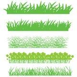 hierba y naturaleza Fotos de archivo