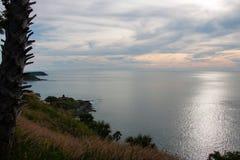 Hierba y puesta del sol en el mar Fotografía de archivo libre de regalías