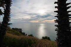 Hierba y puesta del sol en el mar Imágenes de archivo libres de regalías
