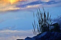Hierba y rocas sobre el lago en la puesta del sol Fotos de archivo