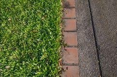 Hierba y sendero, topview Imagen de archivo