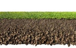 Hierba y suelo ilustración del vector