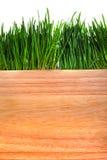 Hierba y tablero de madera Fotografía de archivo libre de regalías