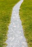 Hierba y trayectoria de la piedra Textura verde y gris Imagen de archivo