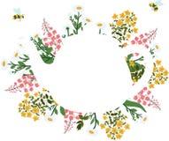 Hierbas alrededor de la tetera blanca en un fondo transparente con las abejas del vuelo Fotos de archivo libres de regalías