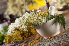 Hierbas, bayas y flores con el mortero, en backgrou de madera de la tabla Imagen de archivo libre de regalías