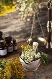 Hierbas, bayas y flores con el mortero, en backgrou de madera de la tabla Fotografía de archivo libre de regalías