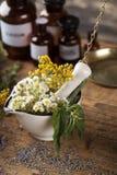 Hierbas, bayas y flores con el mortero, en backgrou de madera de la tabla Imagen de archivo