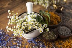 Hierbas, bayas y flores con el mortero, en backgrou de madera de la tabla Imagenes de archivo