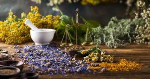 Hierbas, bayas y flores con el mortero, en backgrou de madera de la tabla Fotos de archivo