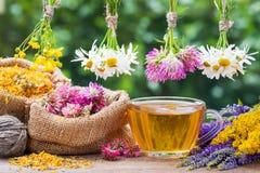 Hierbas curativas, bolsos con las plantas secadas y taza de té