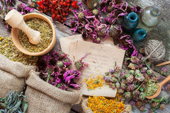 Hierbas curativas en bolsos de la arpillera, mortero de madera, botellas y tinte Fotografía de archivo