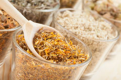 Hierbas curativas en las tazas de cristal y la cuchara de madera, medicina herbaria Fotos de archivo