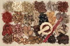 Hierbas del boticario del chino tradicional imagen de archivo libre de regalías