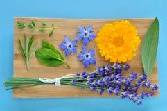 Hierbas del verano y flores comestibles en la placa de madera. Foto de archivo