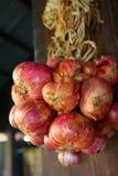 Hierbas e ingredientes tailandeses Fotos de archivo libres de regalías