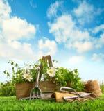 Hierbas frescas con los utensilios de jardinería en la hierba imagenes de archivo