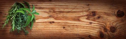 Hierbas frescas de la especia en la madera rústica fotos de archivo