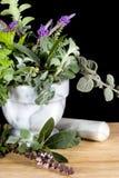 Hierbas frescas en el mortero de mármol foto de archivo