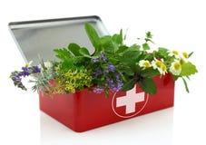 Hierbas frescas en equipo de primeros auxilios Imagen de archivo libre de regalías