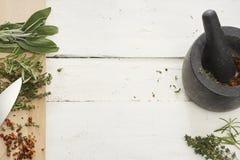 hierbas frescas y tomates secados foto de archivo libre de regalías