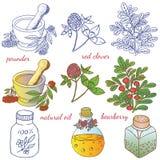 Hierbas medicinales 2 Fotografía de archivo