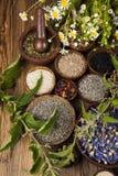 Hierbas medicinales frescas en fondo de madera Imagenes de archivo