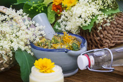 Hierbas medicinales, homeopatía fotografía de archivo libre de regalías
