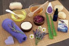 Hierbas medicinales para Skincare Fotos de archivo libres de regalías