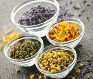 Hierbas medicinales secadas imagen de archivo