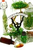 Hierbas para la medicina Imagen de archivo libre de regalías