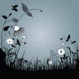 Hierbas salvajes y flores Imagen de archivo libre de regalías