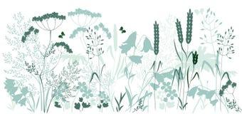 Hierbas salvajes y una mariposa stock de ilustración