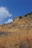 Hierbas secadas de Spinalonga Imagen de archivo