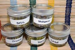 Hierbas secadas en tarros Fotografía de archivo libre de regalías