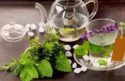Hierbas tisana y de la menta de té todavía de la taza vida Imagenes de archivo