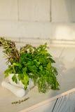 Hierbas verdes frescas de la mezcla Tomillo, Rosemary, eneldo y perejil en el mortero en el fondo blanco fotografía de archivo