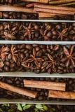 Hierbas y especias 2 Fotografía de archivo libre de regalías