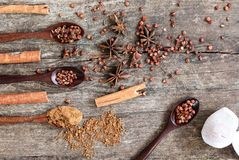 Hierbas y especias en un tablero de madera Cuchara de la especia Fotografía de archivo
