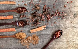 Hierbas y especias en un tablero de madera Cuchara de la especia Fotos de archivo