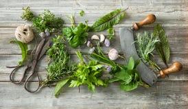 Hierbas y especias frescas en la tabla de madera Fotos de archivo libres de regalías